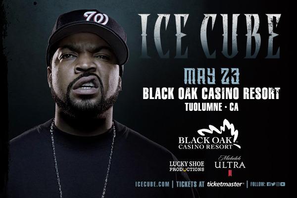 Ice Cube at Westside Pavilion
